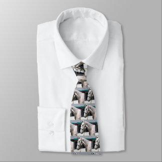 Tapit-Rote Fasig Tipton Tie