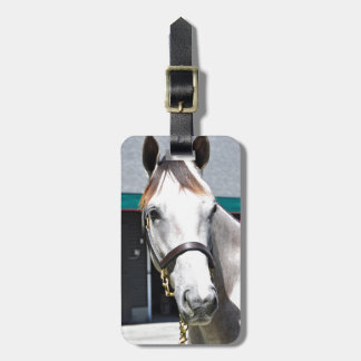 Tapit -Rote Hip #140 Luggage Tag