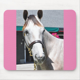 Tapit -Rote Hip #140 Mouse Pad