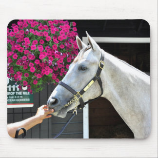 Tapit -Rote Hip no.140 Mouse Pad