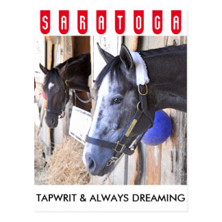 Tapwrit & Always Dreaming Postcard