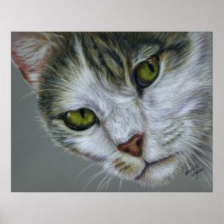 Tara - arte del gato poster