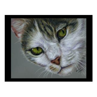 Tara - arte del gato tarjeta postal