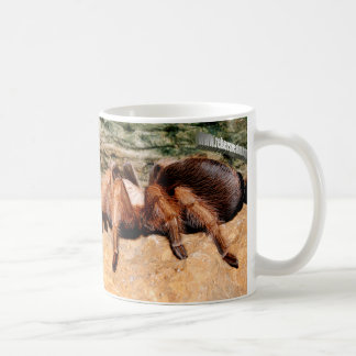Tarantula 3 coffee mug