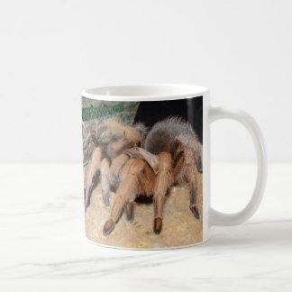 Tarantula 7 coffee mug