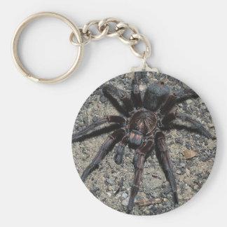 Tarantula Basic Round Button Keychain