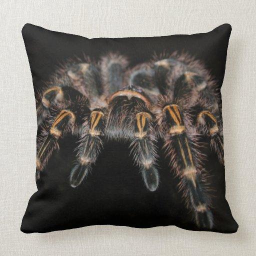 How Big Should Throw Pillows Be : Tarantula Big Spider Hairy Arachnoid Throw Pillow Zazzle