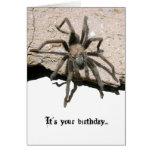 Tarantula Birthday Card