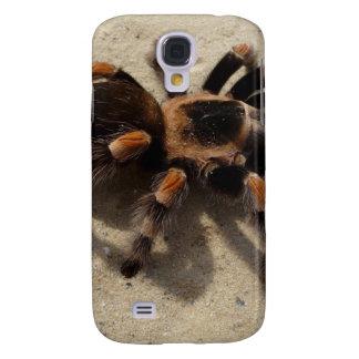 Tarantula brachypelma red knee poisonous HTC vivid cover
