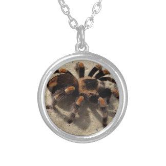 Tarantula brachypelma red knee poisonous pendants