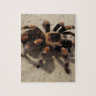 Tarantula brachypelma red knee poisonous jigsaw puzzle
