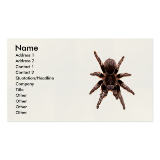 Tarantula Business Card