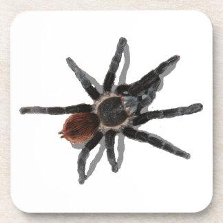 Tarantula coaster pack coark pet spider pests