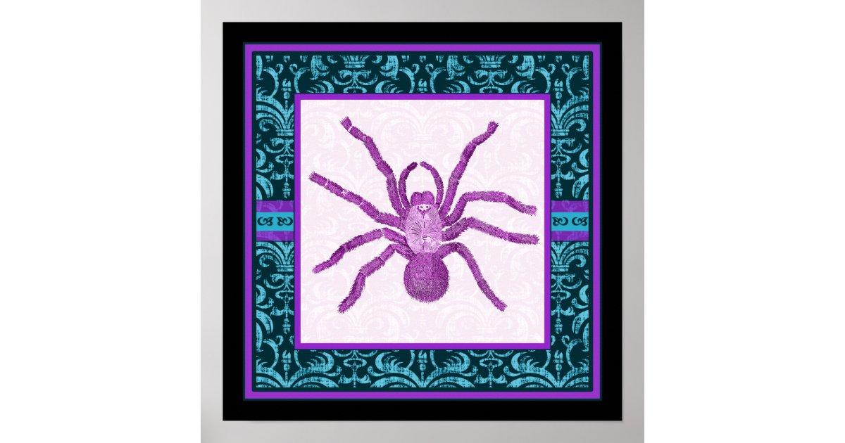 Tarantula Elegant Teal Amp Fuschia Damask Border Poster