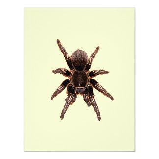 Tarantula 4.25x5.5 Paper Invitation Card
