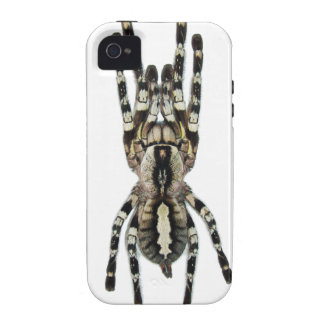 Tarantula iPhone Case iPhone 4 Covers