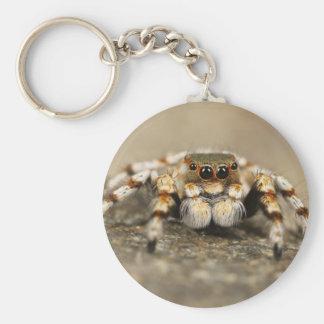 Tarantula Jumping Bird Spider awesome accessories Basic Round Button Keychain