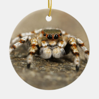 Tarantula Jumping Bird Spider awesome accessories Double-Sided Ceramic Round Christmas Ornament