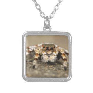 Tarantula Jumping Bird Spider awesome accessories Jewelry
