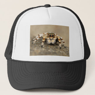 Tarantula Jumping Bird Spider awesome accessories Trucker Hat