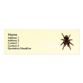 Tarantula Mini Business Card