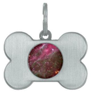 Tarantula Nebula (Hubble Telescope) Pet Tags