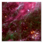 Tarantula Nebula (Hubble Telescope) Print
