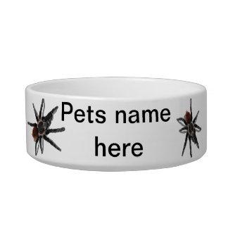 Tarantula pet bowl white