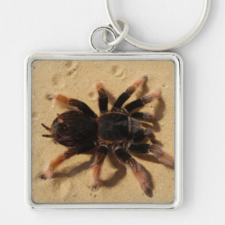 Tarantula Photo Silver-Colored Square Keychain
