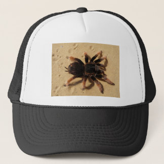 Tarantula Photo Trucker Hat