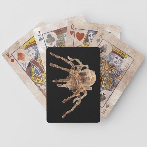 Tarantula plain Playing Cards