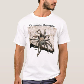 Tarantula que camina sobre la camisa