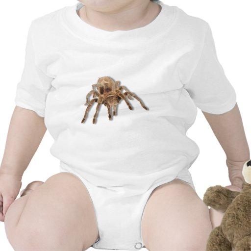 Tarantula spider baby bodysuits