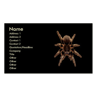 Tarantula Spider Business Card