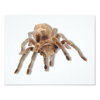 "Tarantula spider 4.25"" x 5.5"" invitation card"