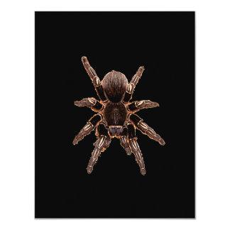 Tarantula Spider 4.25x5.5 Paper Invitation Card