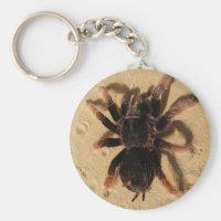 Tarantula Spider Keychain