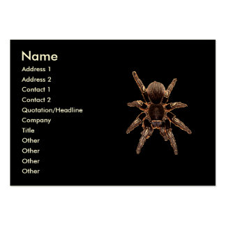 Tarantula Spider Large Business Card