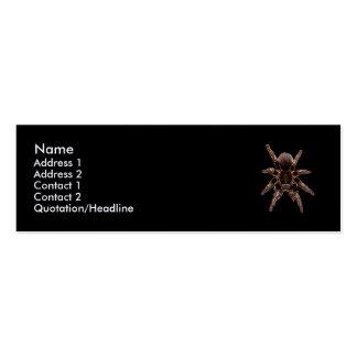 Tarantula Spider Mini Business Card