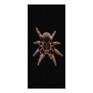 Tarantula Spider Rack Card