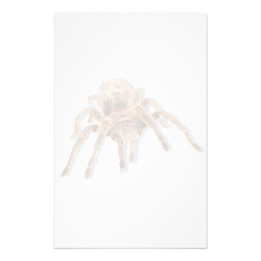 Tarantula spider stationery