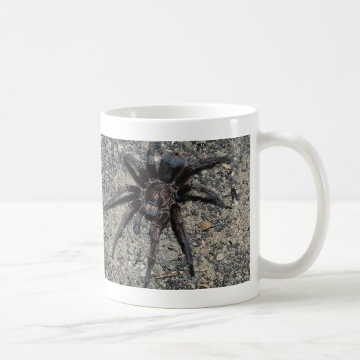 Tarantula Taza De Café