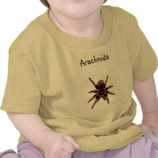 Tarantula Shirt