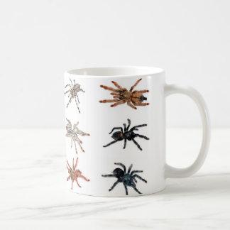 tarantulas taza de café