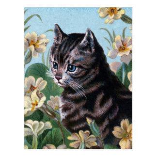 Tardar tiempo para oler las flores postales