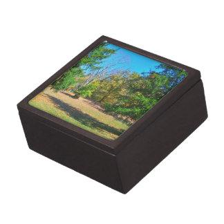 Tarde de animación del otoño caja de joyas de calidad