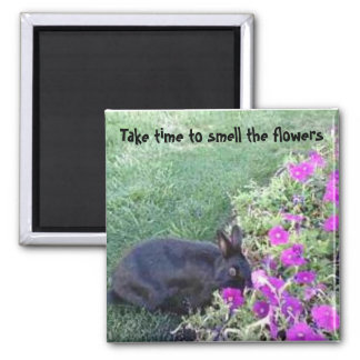 Tarde el tiempo para oler las flores imán cuadrado