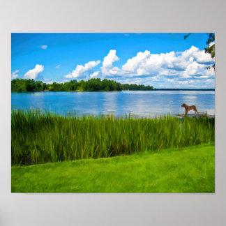 Tarde en el lago con el perro de Labrador Póster