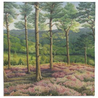 Tarde Sun, pinos de las colinas de Surrey Servilletas De Papel
