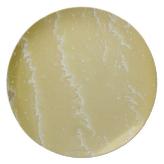 Tarentise Cheese, Abstract Plate